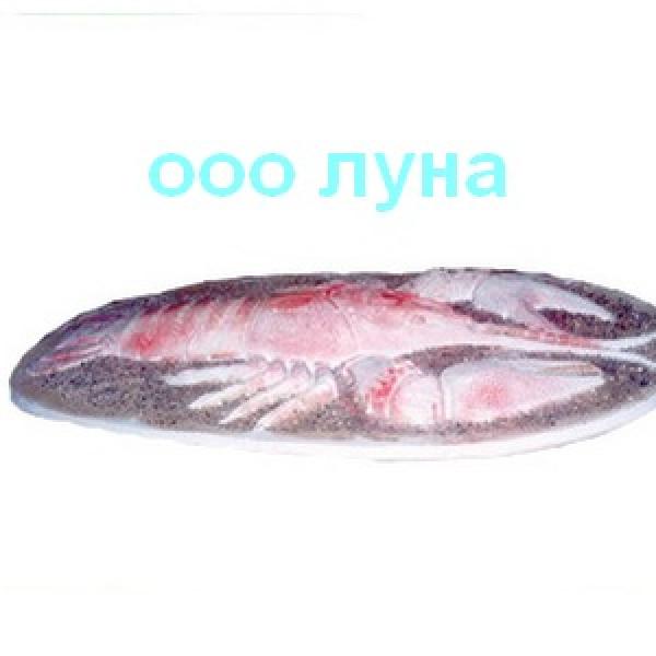 rak_b