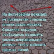 foto_dik_mozaika_10_b